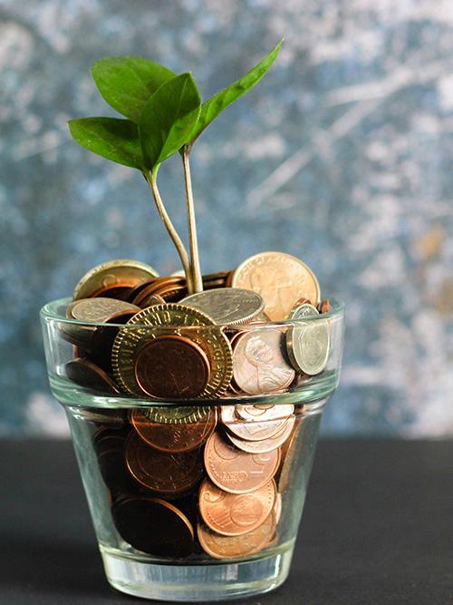 consultanta-financiara-fiscala